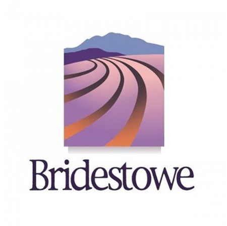 Picture for category Bridestowe